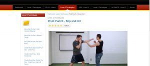 How to learn wing chun at home