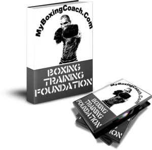 lear to fight online martial arts training - boxing program