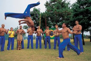 Brazilian Martial Arts