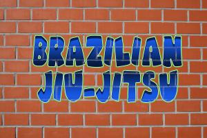 Brazilian Jiu-Jitsu T-Shirts