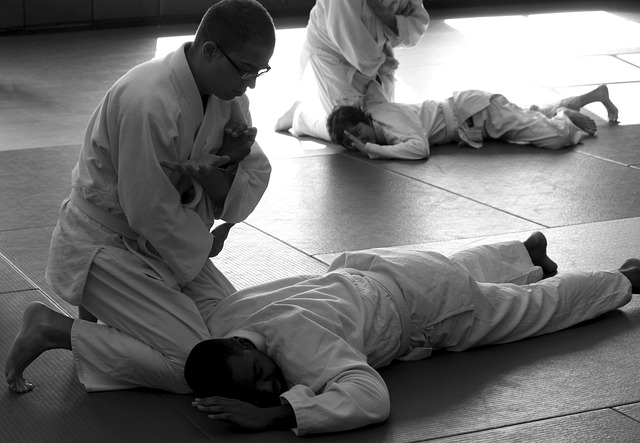 Martial arts training: a more mental approach