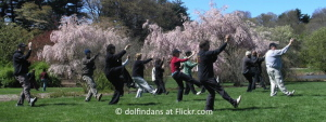 Group Tai Chi in Park by A Lake