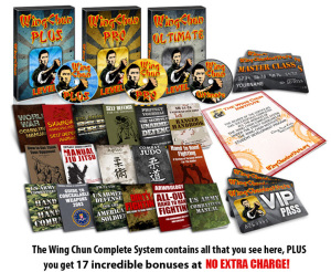 how to learn wing chun kung Fu online at home