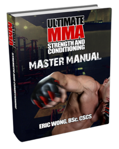 Online Martial Arts Training Program