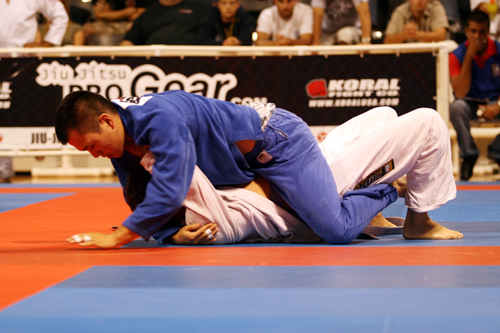 Brazilian jiu jitsu positions Mount