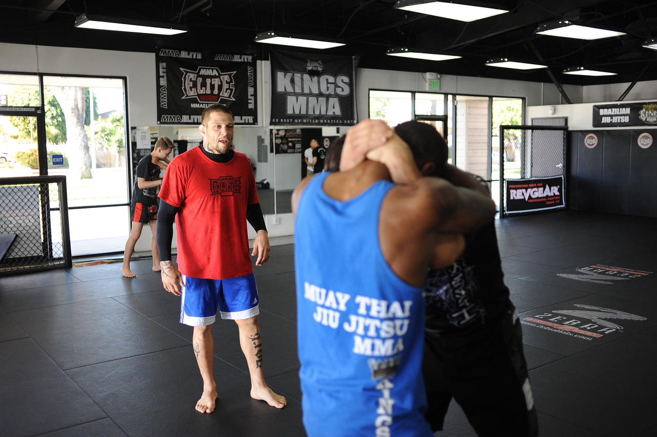 Best MMA Gyms in New York City: Top 10 - Martial Arts Lab